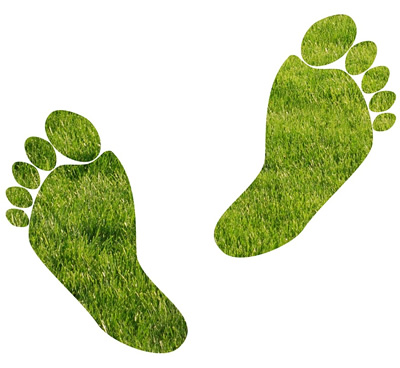Does your website have a light carbon footprint?